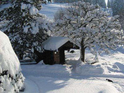 Blockhütte im Winter